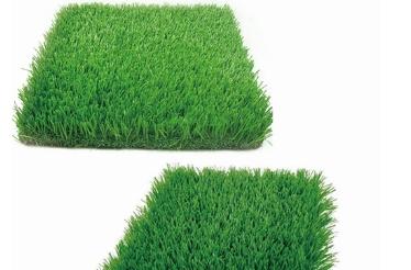 运动休闲人造草坪